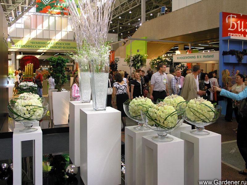 Выставки  GreenInforu