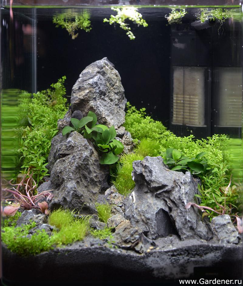 Горка в аквариум своими руками