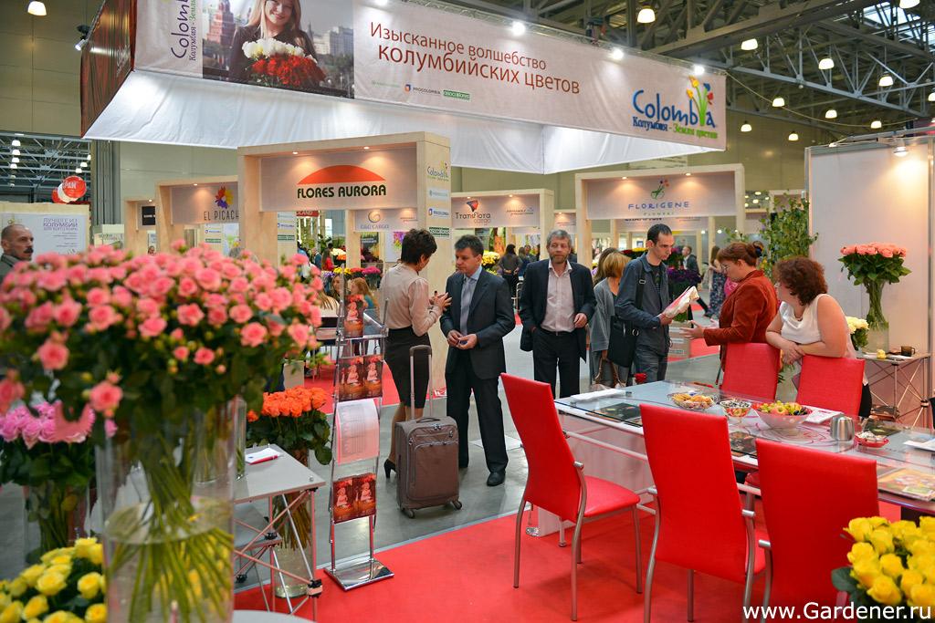 Крокус-экспо выставка цветов