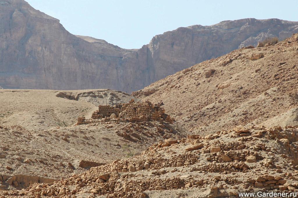 как знакомиться в израиле