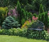 Сад Марковских
